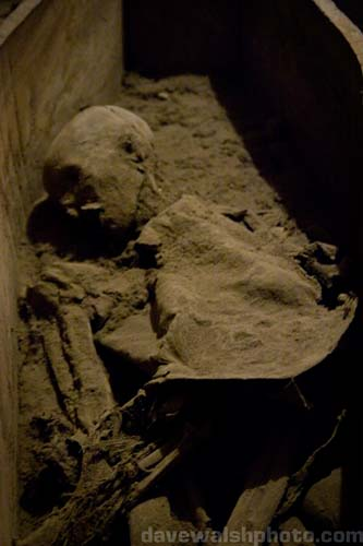 http://blather.net/img/blather/st_michans/IMG_5237_st_michans_mummies.jpg